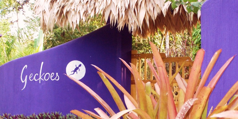 Entrance to Geckoes Lodge, Cocles, Puerto Viejo, Costa Rica