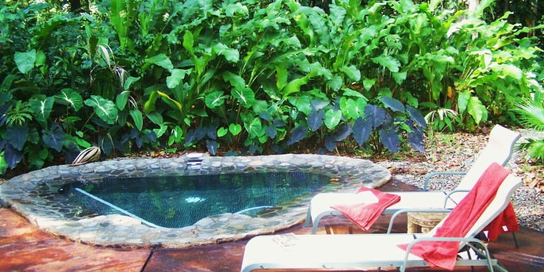 Full size Plunge pool at casa del Bosque, Geckoes Lodge, Cocles, Puerto Viejo, Costa Rica