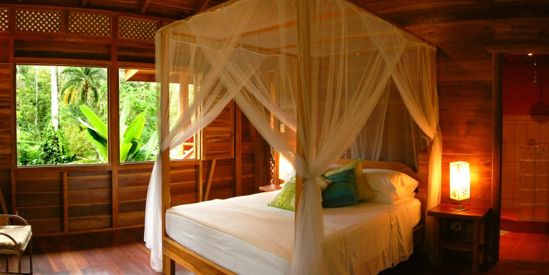 Full size Watch Toucans from your bed in Casa Bromelia at Geckoes Lodge, Puerto Viejo, Costa Rica