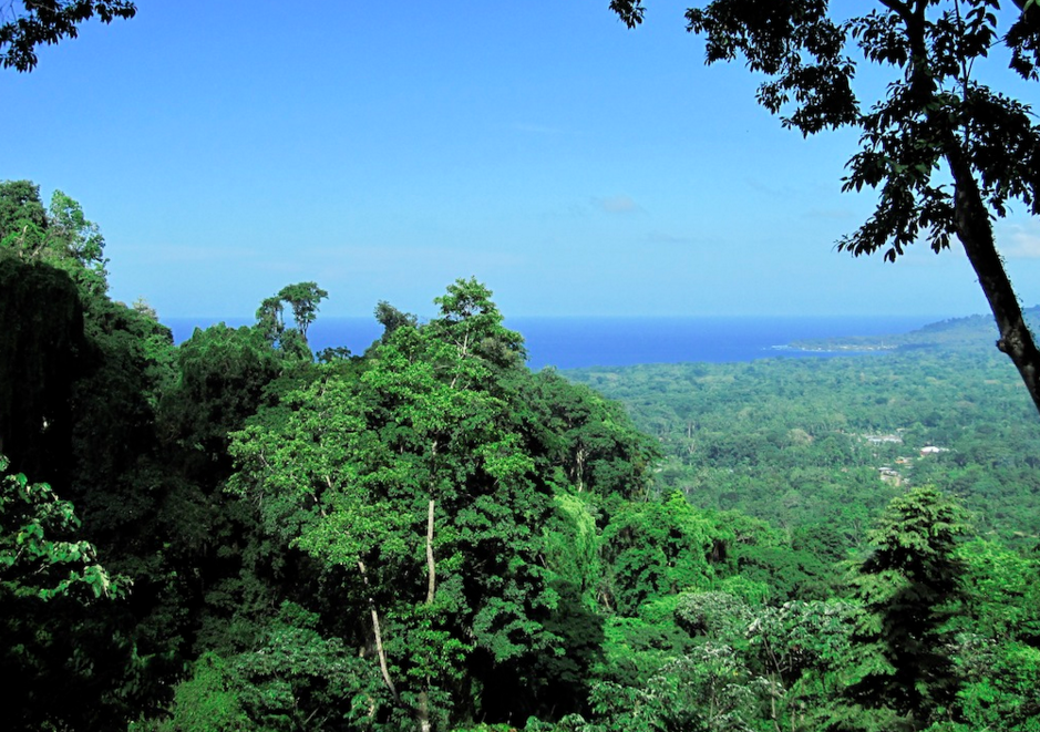 Gated Community Lots with Jungle and Ocean Views starting at $50,000
