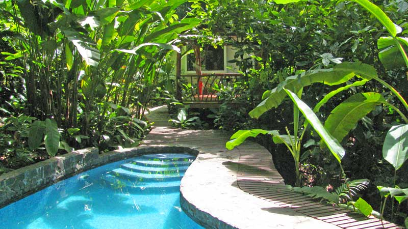 Jungle Home with Pool