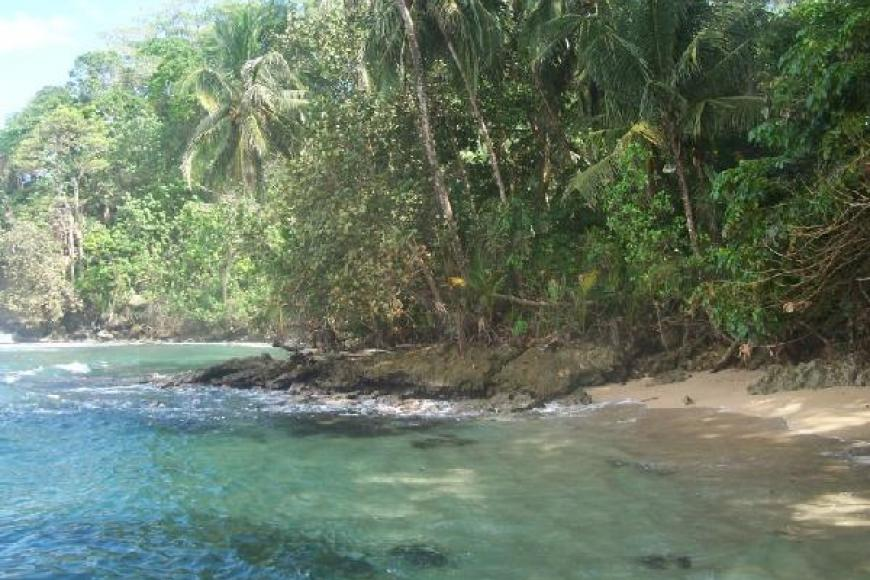Wild Bay ocean front property for sale