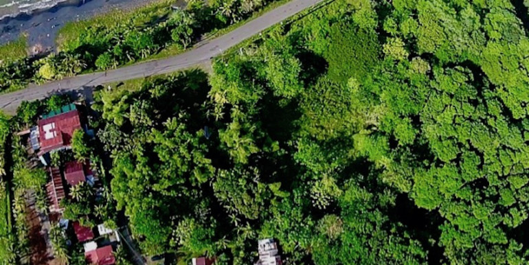 Ariel View of Hidden Jungle Beach House